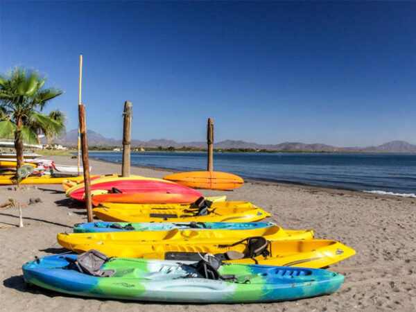 Baja Sea Kayaking