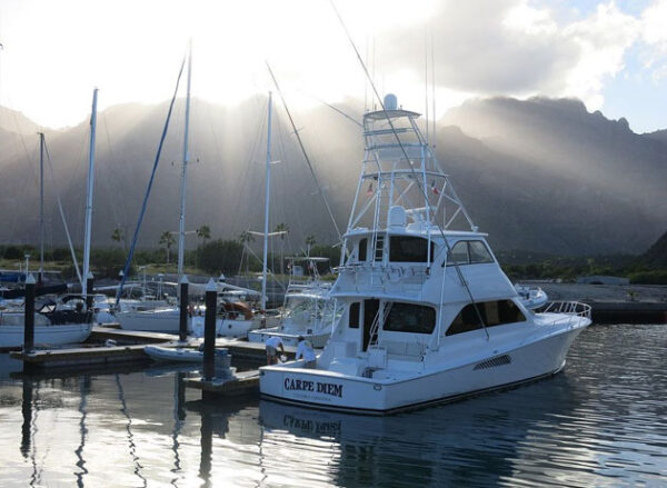 Puerto Escondido Marina Baja California Amenities